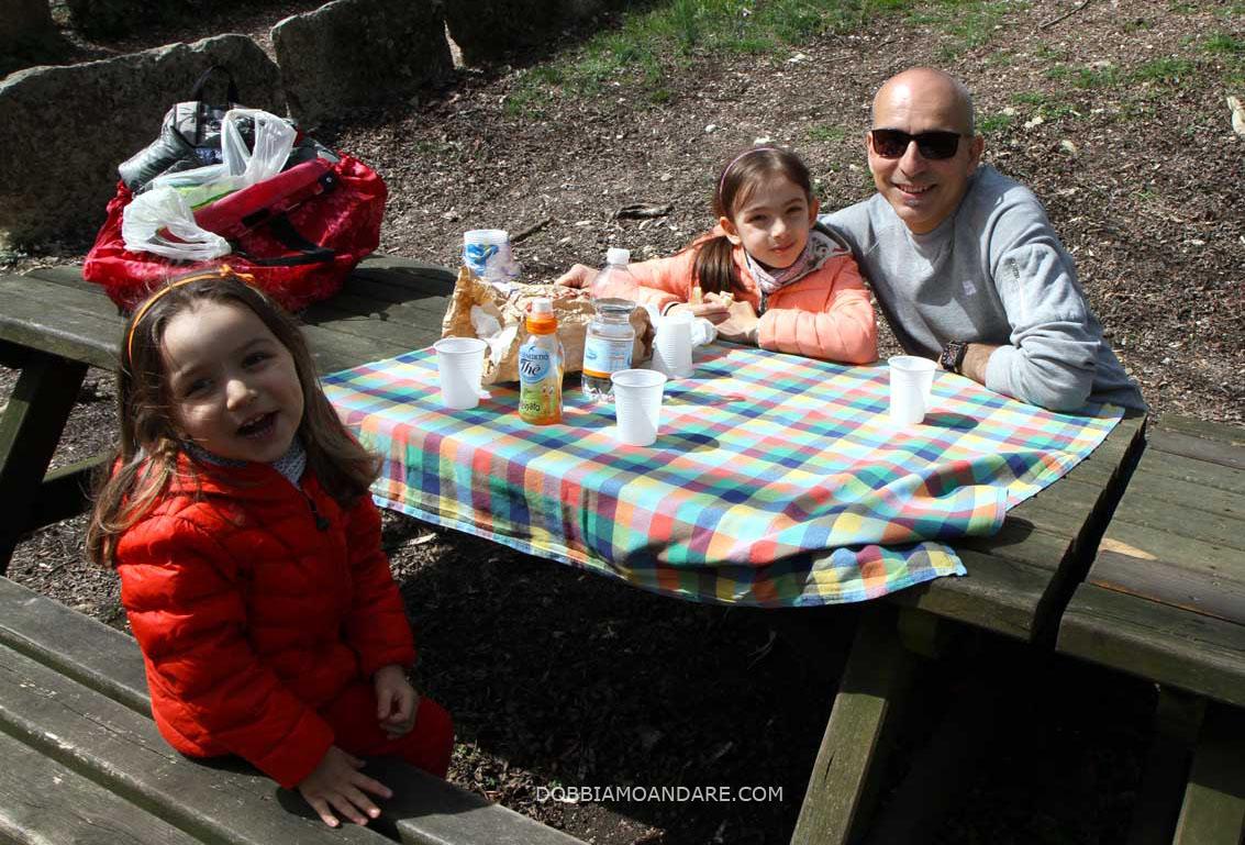 molina_picnic