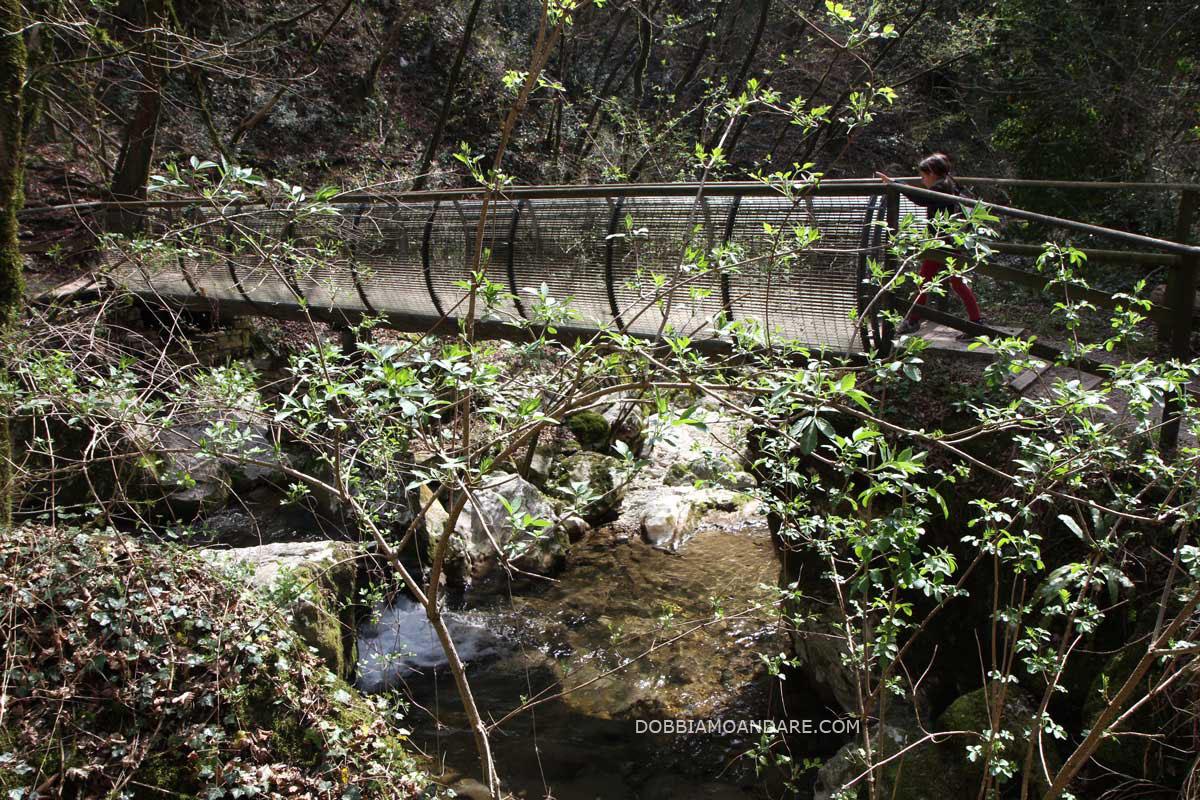 molina_ponte