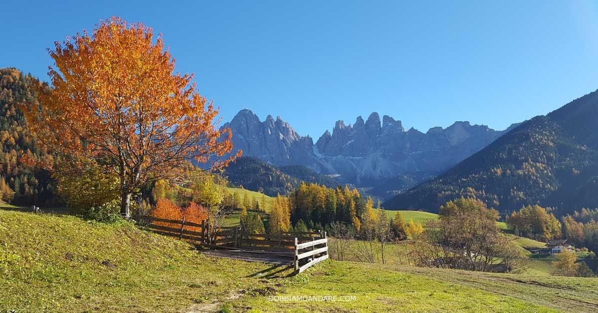 Foliage in Alto Adige