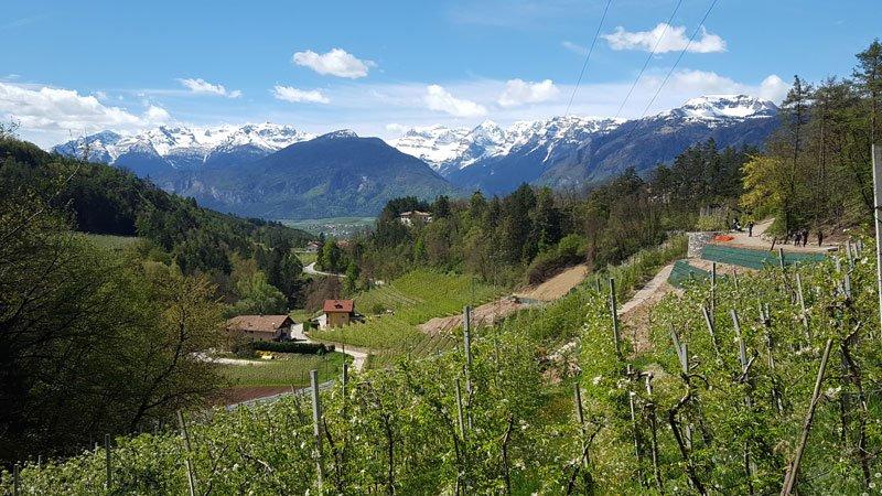 Panorama sulla Val di Non