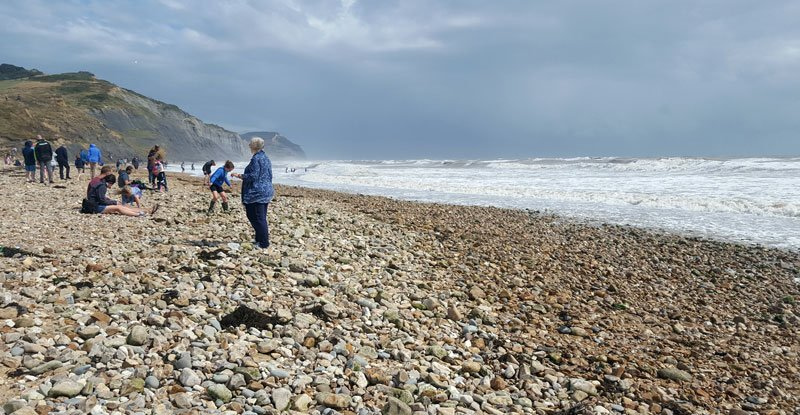 Jurassic Coast - Inghilterra del sud