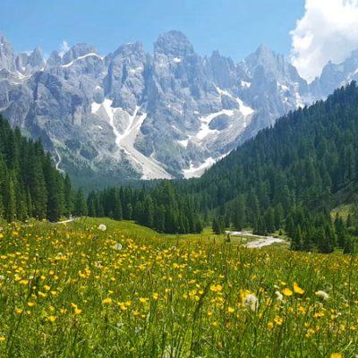 Val Venegia nel Parco Paneveggio in estate