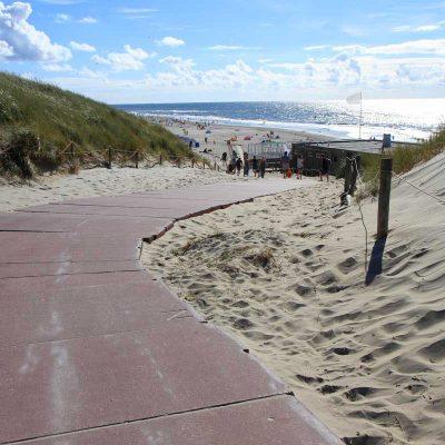 Olanda: Isola di Texel